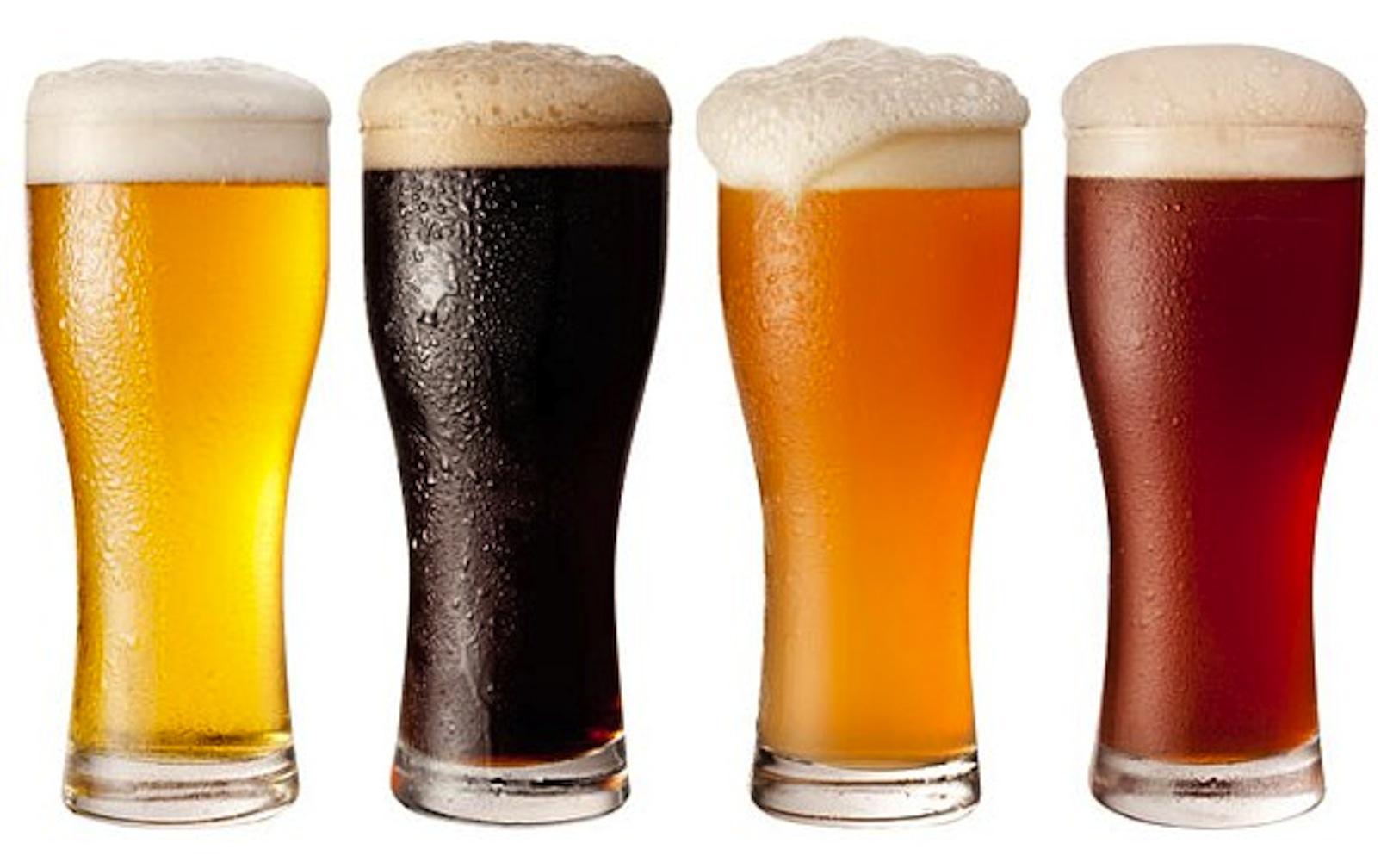 анатомия пива