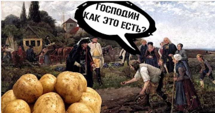 Картофель - история